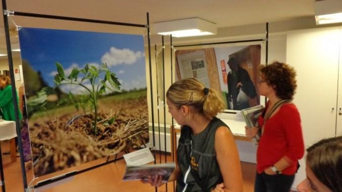 L'exposició de fotos, al centre cívic Pardinyes de Lleida.